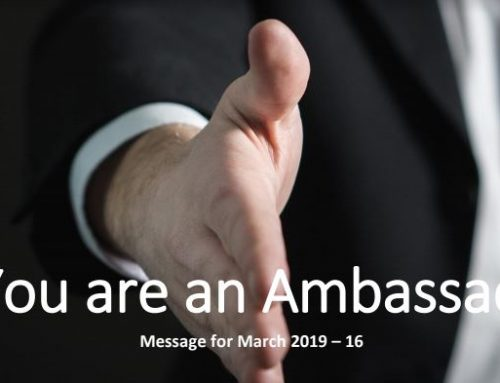 You are an Ambassador